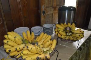 buah hasil panen